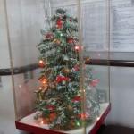 DSC_0053 (002)クリスマスツリー